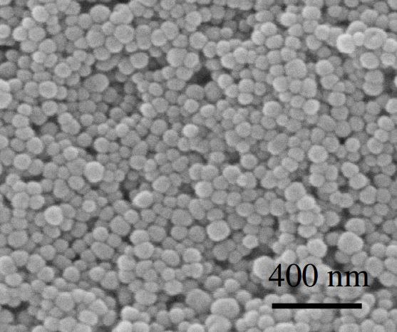 SEM - BaTiO3 Nanoparticles