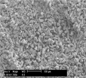 SEM Analysis of Lithium Aluminate Powder