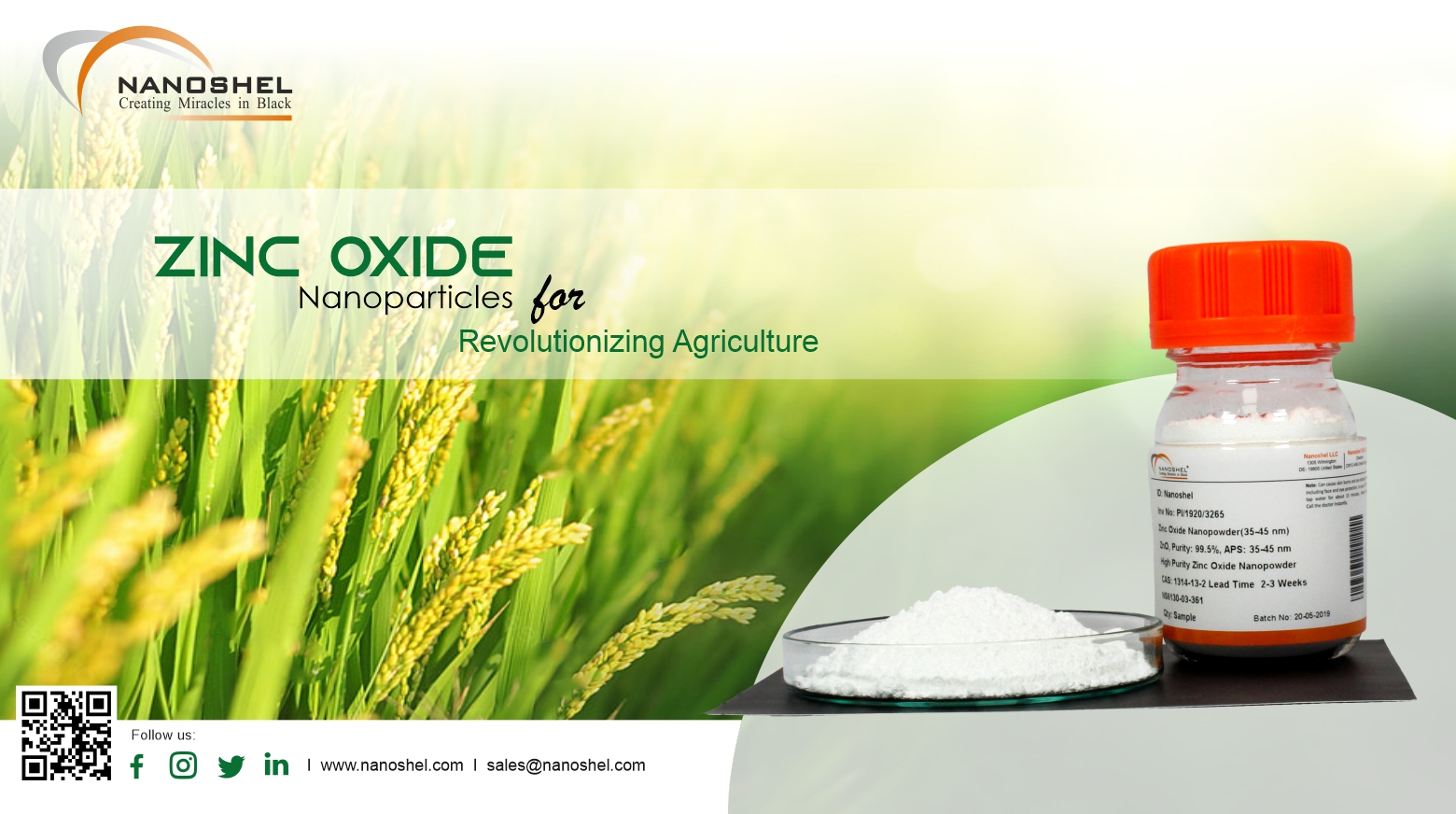 Zinc Oxide nanoparticles in Agriculture