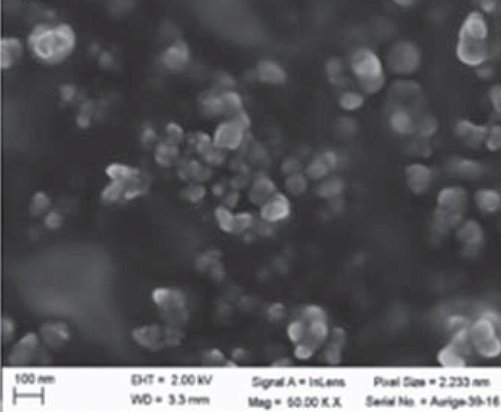 SEM - CdS Nanopaticles