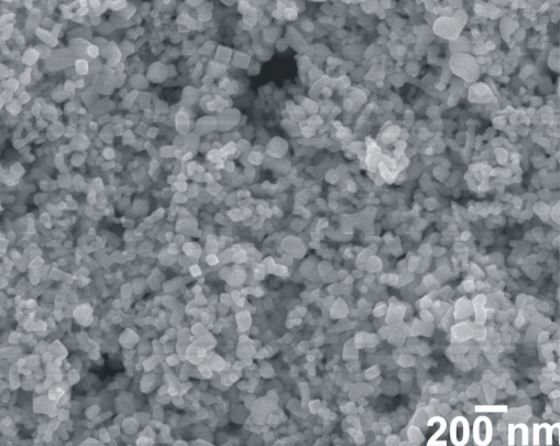 SEM - PbTe Nanocrystals