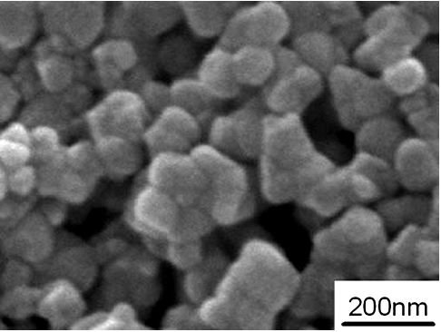 SEM – Yttria Stabilized Zirconia Powder