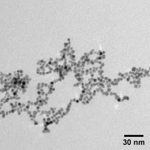 Platinum Nanoparticle Dispersion