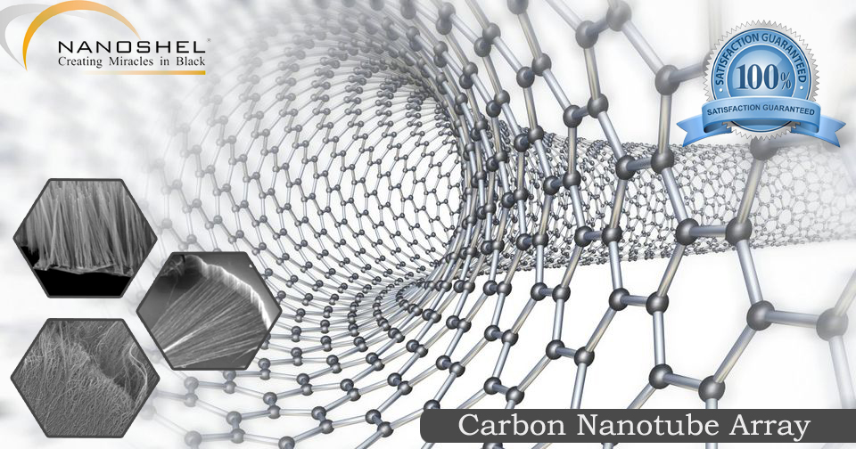 Vertically Aligned Nanotube Arrays