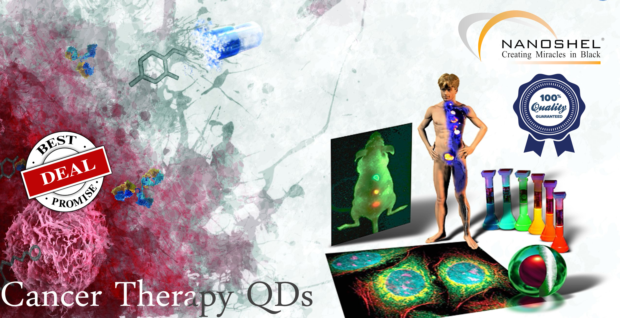 Quantum Dots for Cancer Diagnosis and Therapy
