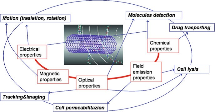Application Single Walled Carbon Nanotubes