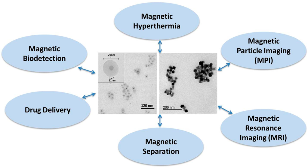 Magnetic Nanoparticles Applications
