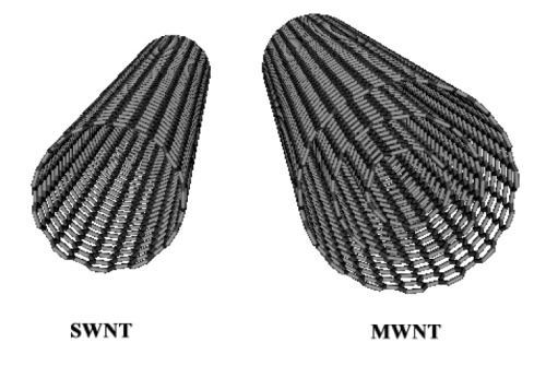 Single walled Carbon Nanotubes SWNTs
